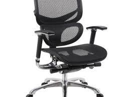 Amazon Ergonomic Office Chair Office Chair Amazing Best Ergonomic Office Chair For Back Pain