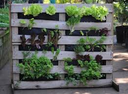quiet corner vertical vegetable garden ideas quiet corner