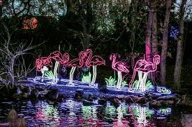 denver zoo lights hours 2015 denver zoo lights front porch