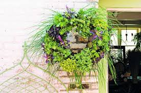 Diy Craft Projects For The Yard And Garden - diy herb garden living wreath backyard projects birds and blooms