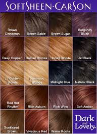 what color is sable hair color dark and lovely fade resistant color 373 brown sable