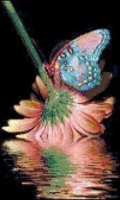 305 best cross stitch butterflies bees dragonflies ladybugs