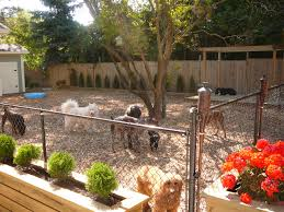 Outdoor Kennel Ideas by I Like The Metal Around The Bottom Of The Fence Great Idea Pet