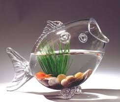 Goldfish Bowl Vase Fish Shaped Fish Bowl Glass Vase 13 3 4 Inch Medium