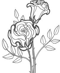 rose coloring page getcoloringpages com
