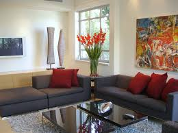 appealing how to decorate living room your apartment with dark