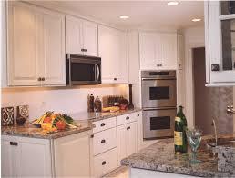 kitchen designed by cabinet style studio ltd in chicago il