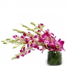 order flowers online cheap flowers delivery to kanpur send flowers bouquet online picksmiles