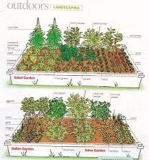 vegetable garden layout and ways to improve u2013 my garden plant
