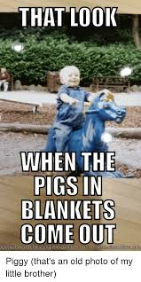 Meme Generator Reddit - that looi when the pigs in blankets comet download meme generator