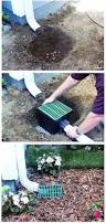 Drainage Ideas For Backyard Downspout Runoff Can Cause Flooding Around The Foundation Of Your