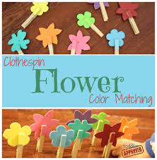 toddler approved clothespin flower color matching