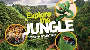 videos for kids national geographic kids