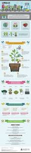 10 infographics on farming and agriculture