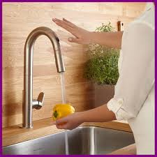 fontaine kitchen faucet shocking lovely copper faucet kitchen photos topwetlandsites pict of