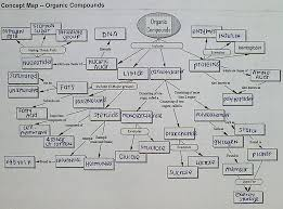 msvictorialin unit 1 biochemistry