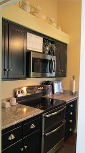 Renovating Kitchen Cabinets 231 Best Kitchen Cabinet Re Do Ideas Images On Pinterest Kitchen
