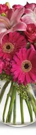 3565 best beautiful flowers images on pinterest beautiful