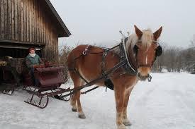 Cape Cod Horseback Riding A Vermont Sleigh Ride Dashing Through The Snow New England Today