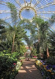 Botanical Garden Buffalo 41 Best The Buffalo Botanical Gardens Images On Pinterest