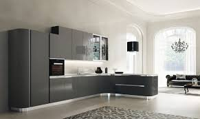 Kitchen Cabinets Northern Virginia Kitchen Cabinet Doors Fairfax Contemporary Cabinet Doors