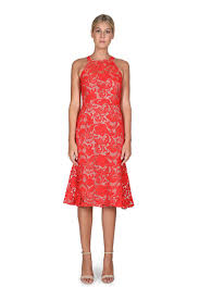 lace dress carnation lace dress cooper st