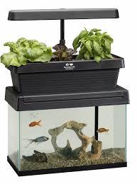 amazon com springworks microfarm aquaponic garden amazon launchpad