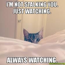 Stalking Meme - i m not stalking you just watching always watching stalker