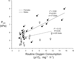 metabolic rate and hypoxia tolerance are affected by group