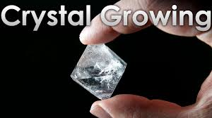 where can i get alum grow transparent single crystals of alum salt at home
