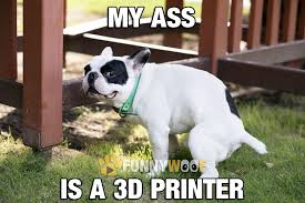 This Is Dog Meme - this dog is not taking a poop it is pure art his ass is a 3d