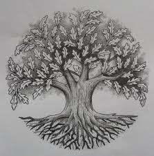 oak tree by design on deviantart