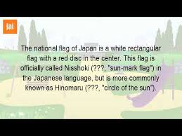 what is the meaning of flag