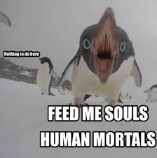 Penguin Memes - cute little penguin
