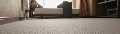 carpet cleaning service springfield mo rugs stains