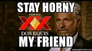 Dos Equis Guy Meme - stay horny my friend dos equis man meme generator