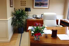 Office Plants by Indoor Tropical Plants For Offices Interior Landscaping Company