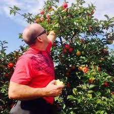 oneida apple orchard farmers market 3976 w mason st hobart