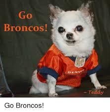 Go Broncos Meme - broncos denv teddy go broncos meme on esmemes com