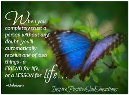 the butterfly for a dear it is what it is