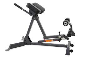 Hyperextension Benches Inspire Hyperextension Bench For Sale At Helisports