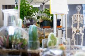 Sva Interior Design Facilities Bio Art