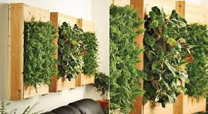 living wall planters u2014 accessories better living through design
