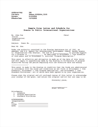 bunch ideas of cover letter internship international organisation
