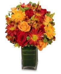 Flower Shops Inverness - potomac florist potomac md flower shop ariel potomac florist