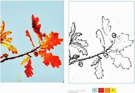 fall leaf tracings printable paint number
