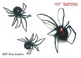 sketches for 3d spider tattoo sketch www sketchesxo com