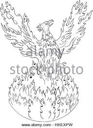 phoenix bird with rising wings in a circle ancient symbol of
