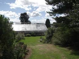Botanic Gardens Dundee The Glasshouse Picture Of Of Dundee Botanic Gardens