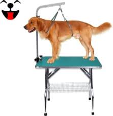 go pet club grooming table electric motor top 7 dog grooming tables of 2018 video review